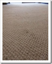 carpetcleaning00