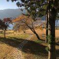 紅葉が彩る箱根芦ノ湖のホテルに現調に行ってきました。